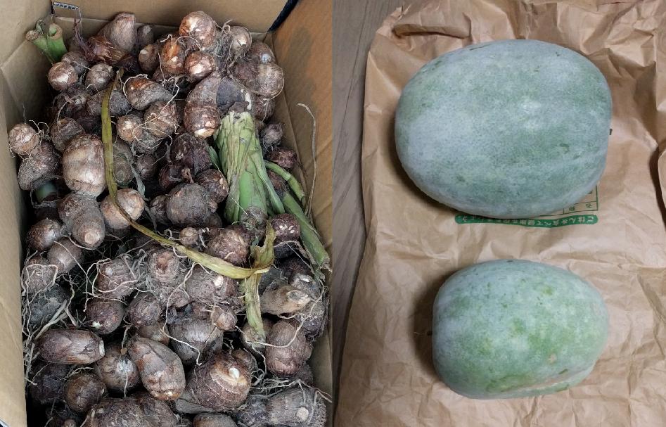 埼玉県の清水様からの寄付野菜50キロを日野市内の施設「トリノス」等に贈呈(2016/11/5)