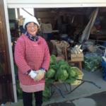 埼玉の清水様より、大根50本、白菜35個、チンゲン菜大袋2袋をご寄付いただき、トリノス、クリッパーズ、ダルクに届けました。(2016/12/10)